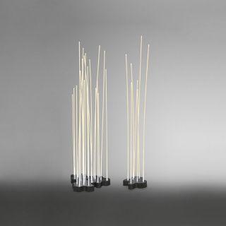 Reeds IP 67